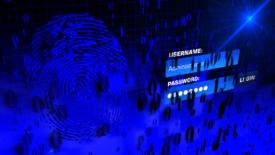Fingerprint and password on computer screen