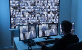 monitor3-900px.jpg
