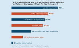 Negligent Data Loss: