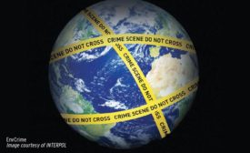 Environmental Crime an Increasing Threat to Security
