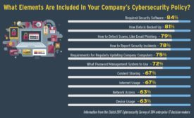 Information from the Clutch 2017 Cybersecurity Survey of Enterprise IT decision-makers