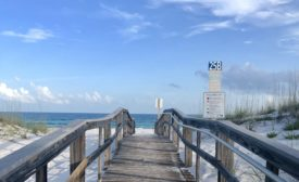 Florida tries to urge cyber security professionals to work in Florida remotely; offer incentives