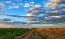 agriculture losses due to natural disasters in the billions in 2020