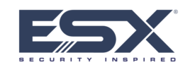 ESX 2021 logo