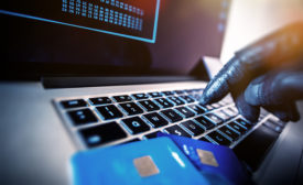 identity theft, fraud prevention, cybersecurity, data theft