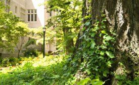 Davenport University named safe campus